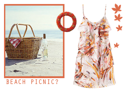 beachpicnic1